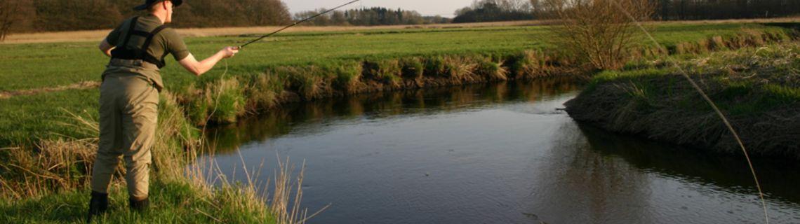 Bild von Angler an der Treene als Kopfbild der Website